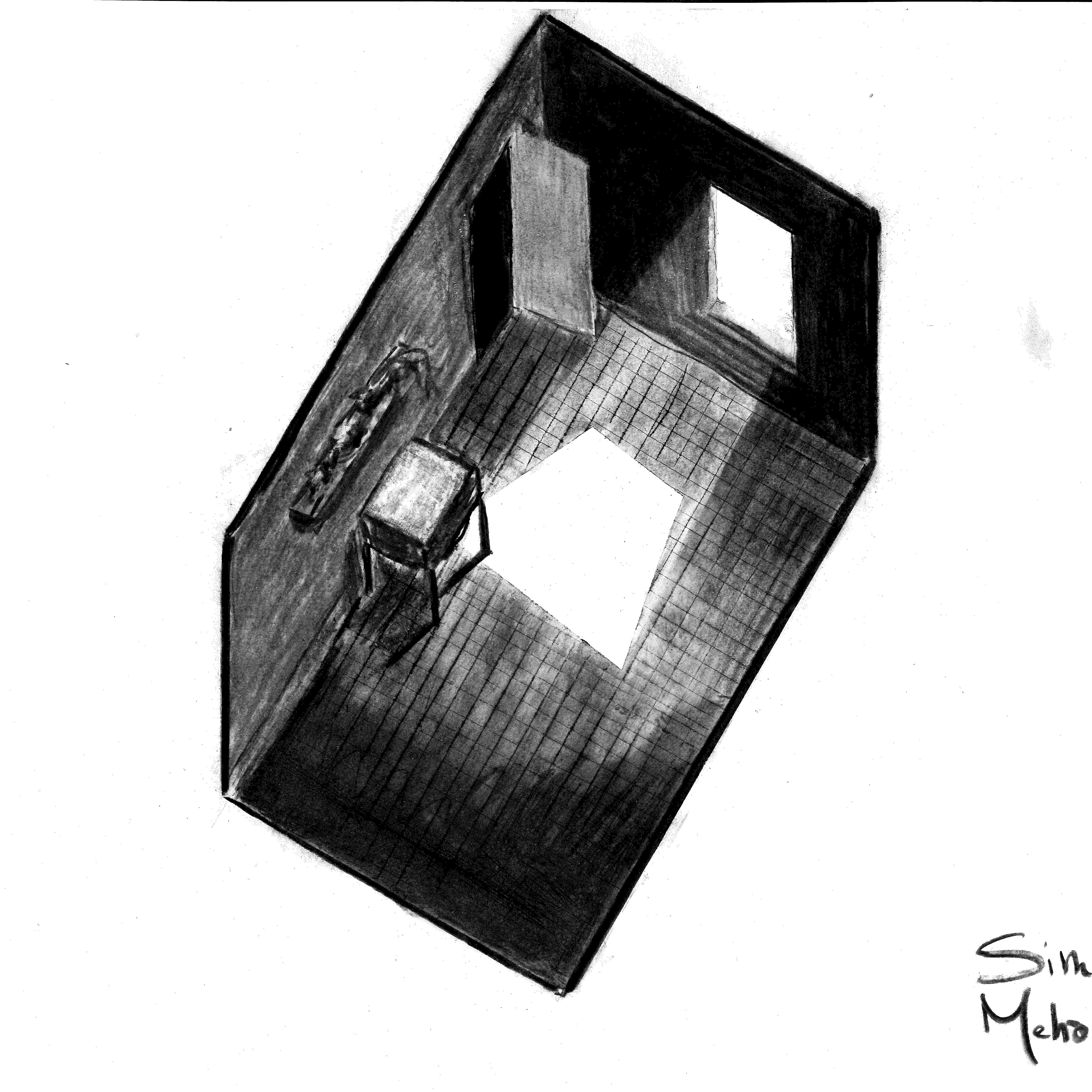 BUCHAREST-lab-ARRET SUR IMAGE 190222-sierranevada-21fev-a3__Page_11