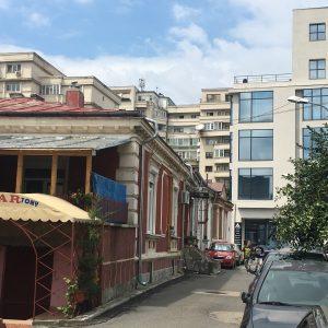 Bucharest lab-PHOTO C Fontaine Juillet 2018 11