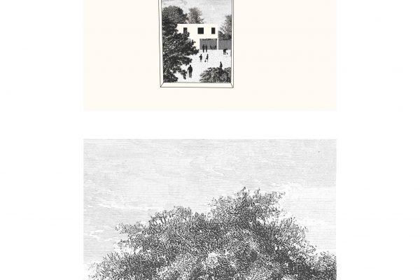 UCLOUVAIN_Page_065